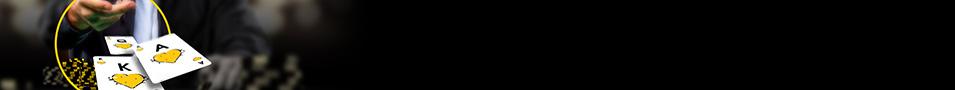 Top_banner-955x90_neutral